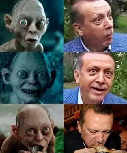 erdogangollum
